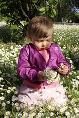 bimba bambina gioca con margherite