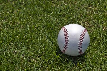 芝の上に転がる野球のボール