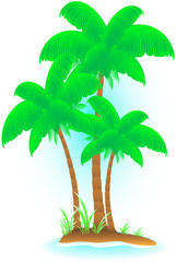 isolated tropical island with palm and sea