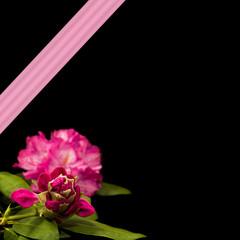 Rododendron Square Graphic