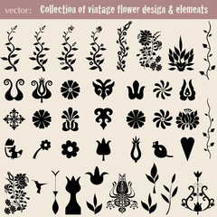 Vintage decoration elements for your design.Vector