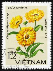 Chrysanthemum flower. Vietnam postage stamp