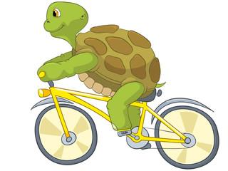 Funny Turtle. Biker.