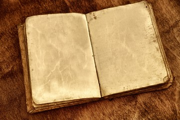 Opened vintage book with blank pages.