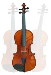 violin on white background with clipping path