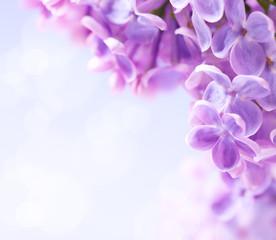 Spoed Foto op Canvas Lilac Art lilac flowers background