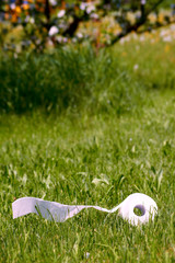 toilet paper on a green meadow