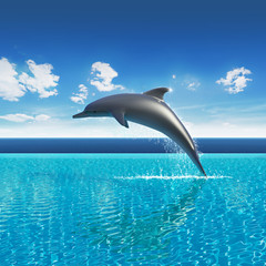 Fotorollo Delfine Dolphin jumps above pool water, summer sky aquarium