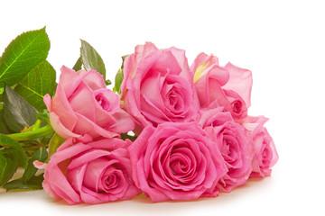Pink rose bouguet on white
