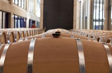 Wall Mural - Barricas de vino en la bodega