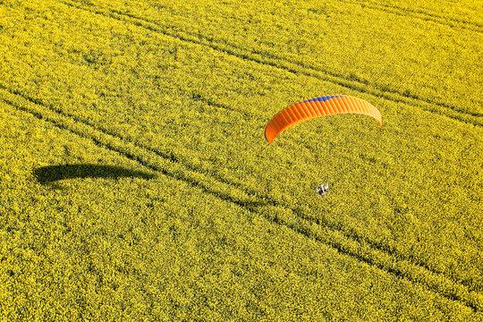 parapente dans champ de colza