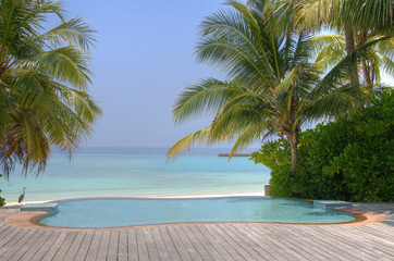 Luxury tropical Infinity Pool on the Maldives