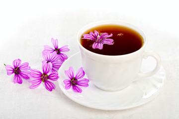 Teacup on white background.