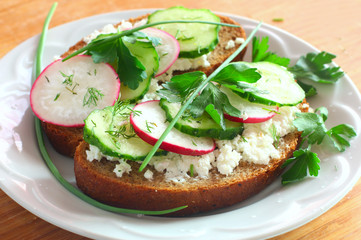 Fresh toast sandwiches with radish,cucumber and soft cheese