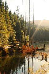Westwood Lake, Nanaimo, British Columbia