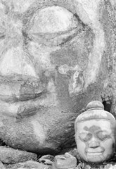 Ancient Head Buddha statue in Wat Umong at Chiangmai, TH.