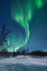 Fototapete - Aurora Borealis in Sweden