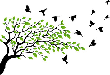 Tree with bird flying