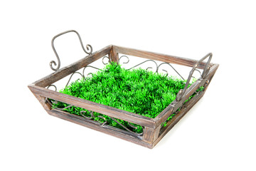 Empty tray with grass