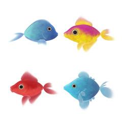 four fish illustrations