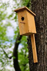 Wooden man made birdhouse