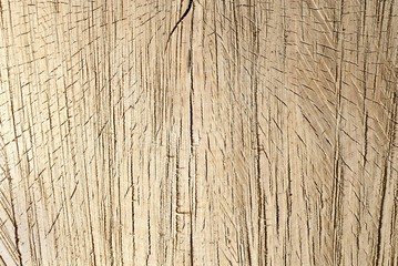 Fototapeta wooden background obraz