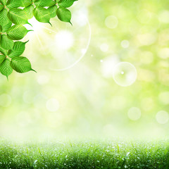 Abstract spring and summer backgrounds
