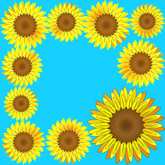 Sunflowers frame. Vector.