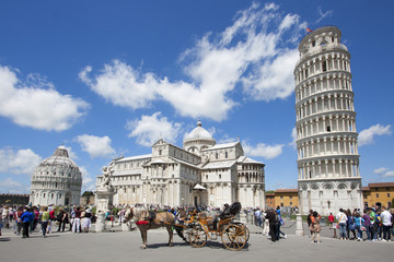 Fotomurales - Pisa - Piazza del miracoli