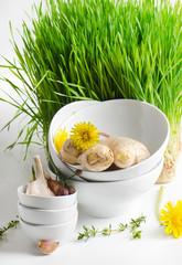 Healthy food - garlic and herbs