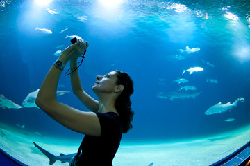 Woman taking pictures of fish in front of aquarium.