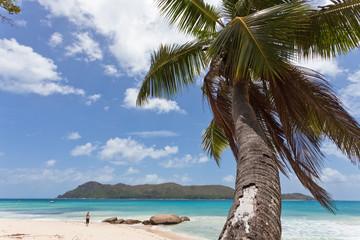 Island Curieuse - Seychellen - Seychelles