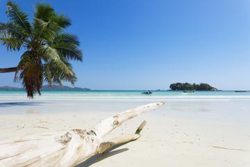 Beach of Praslin - Seychellen - Seychelles