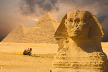 Printed roller blinds Egypt Great Sphinx Face Pyramids Sunset Background