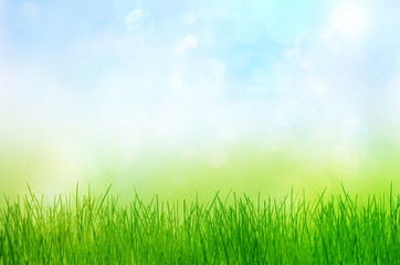 Spring nature background with grass and bokeh lights. Blue sky i