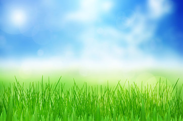 Spring nature background with grass and bokeh lights. Blue sky