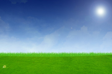 Printed kitchen splashbacks Light blue landscape with grass field