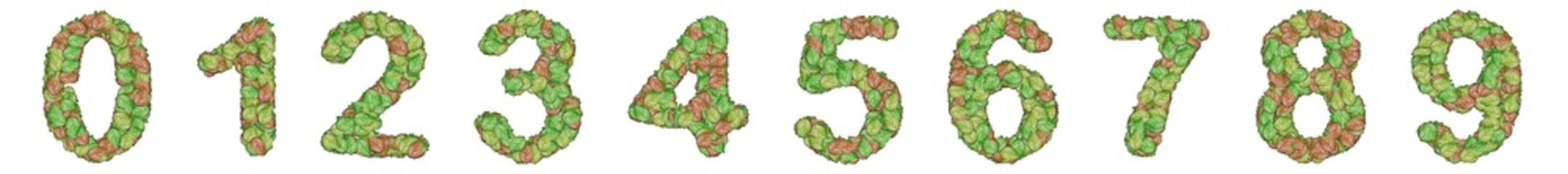number alphabet leaf on white background