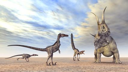 Velociraptoren auf der Jagd