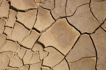 trockener Boden Trockenheit