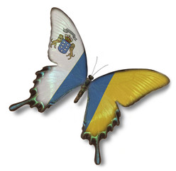 Canary Islands flag on butterfly