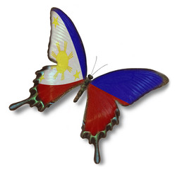 Philippines flag on butterfly