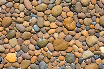 Background of small marine stones