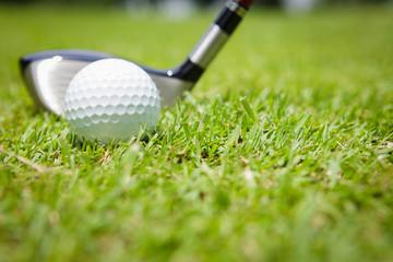 Golf ball in green grass