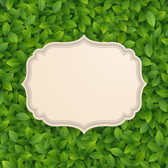 Wall Mural - Vintage card on green leaves texture.