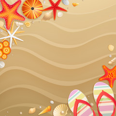 Wall Mural - Holiday greeting card with shells