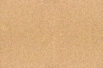 Fond de sable fin vu de dessus