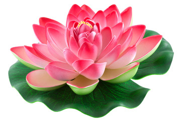 Foto auf Gartenposter Lotosblume nénuphar rose