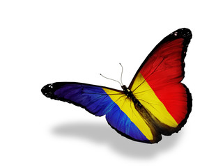 Romanian flag butterfly flying, isolated on white background