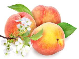 Fresh orange peaches with green leaf